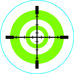 Green & White Target – Pack of 12